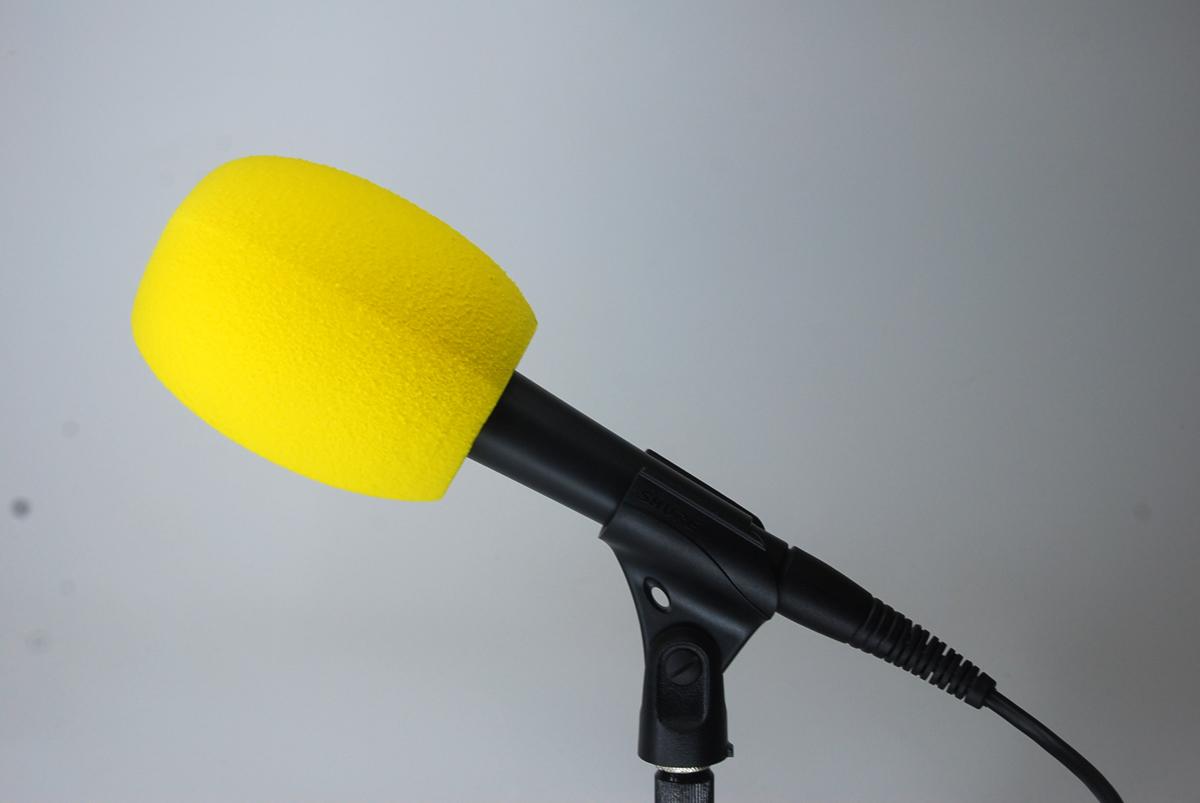esponja microfono logo
