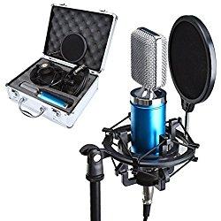 microfono profesional para cantar